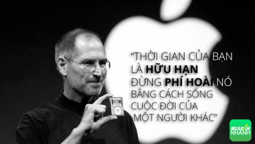 8 câu nói hay của Steve Jobs về sự nghiệp và đam mê